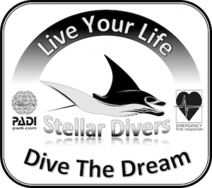 Stellar Divers Logo, PADI Scuba School, Lincoln, UK
