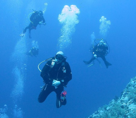 Stellar Divers, your choice PADI Scuba Diving School in Lincoln
